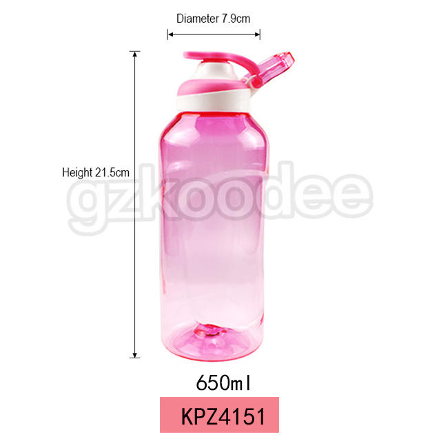Big Capacity Sport Gym Accessory Tritan Water Bottle with Handle 650ml Koodee