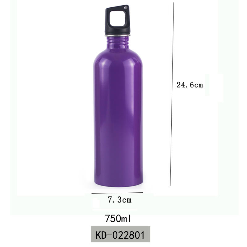 Koodee Vacuum Insulated Outdoor Sports Single Wall Stainless Steel Water Bottle 750ml