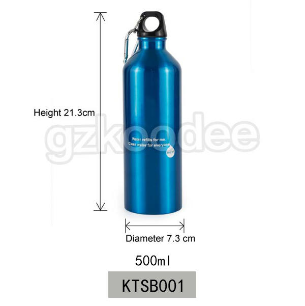 Koodee ODM/OEM Accepted Single Wall Stainless Steel 304 Bottle 500ml